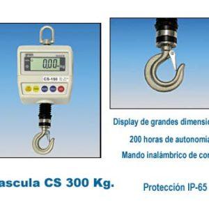 cs300.jpg